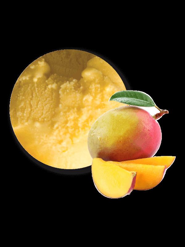 Mango (sorbet 2,5 litres)